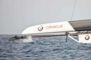 Le trimaran Oracle de VPLP victorieux de la Coupe de L'America
